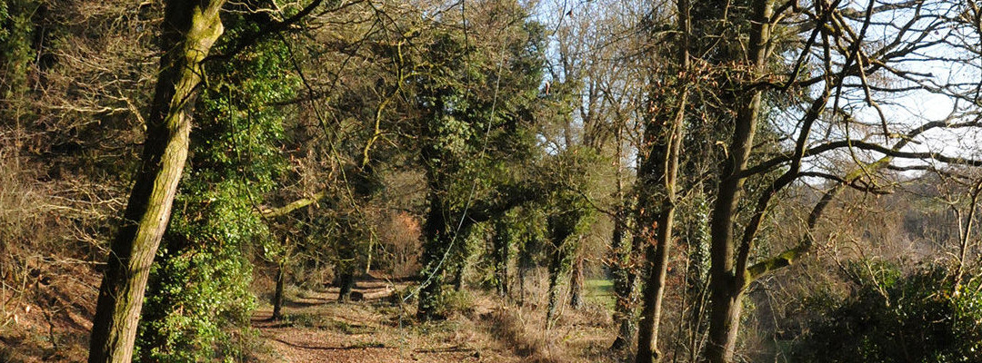 Tunley Overdale Footway Information